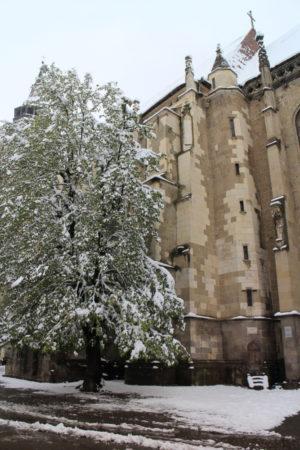 Biserica Neagră