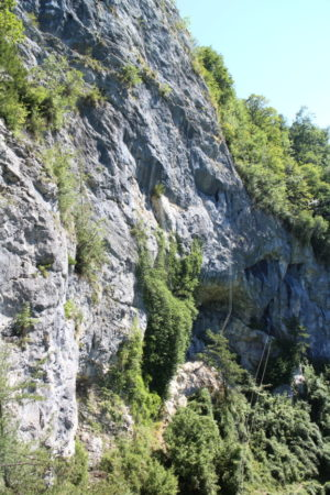 výhľad z drevenej terasy