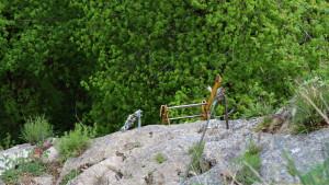 Horný koniec rebríka